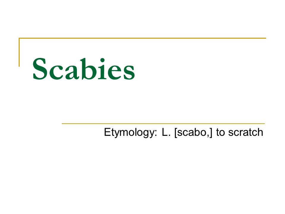 Etymology: L. [scabo,] to scratch